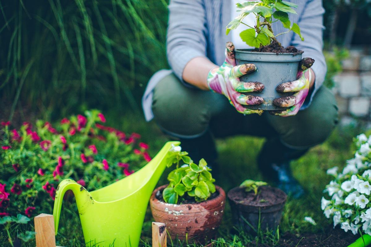 Add. al giardinaggio